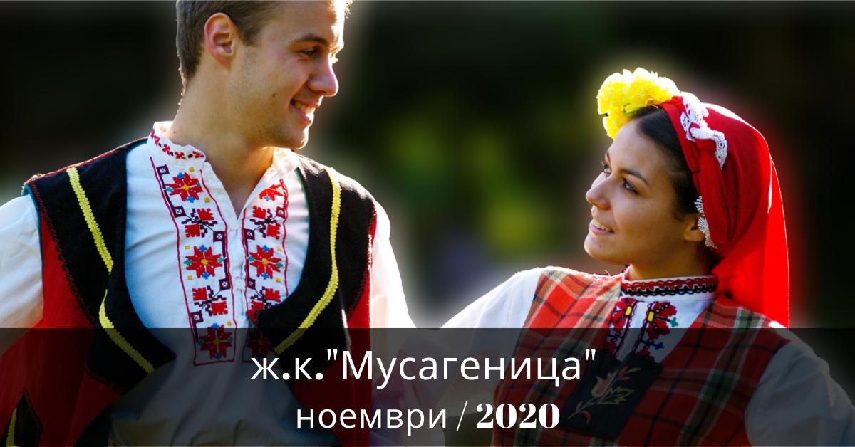 Снимка на статия за Мусагеница - град София.Photo for article